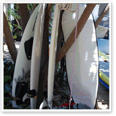 Surfboard stock for Rent on South Padre Island